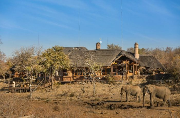 Royal Madikwe Luxury Safari